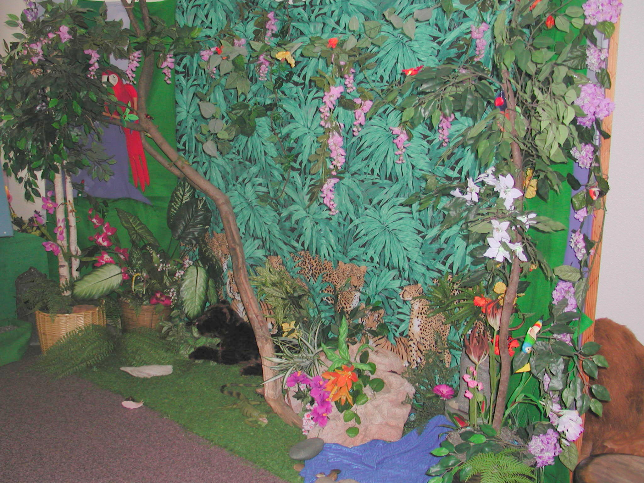 Cradle Roll Rainforest Theme